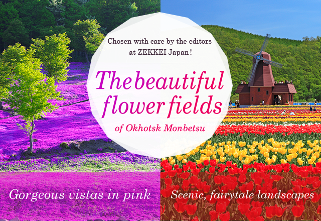 Introducing two miracles of scenic beauty—fields of flowers in Japan's north country