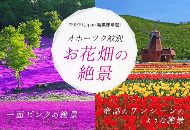 ZEKKEI Japan編集部厳選! オホーツク紋別 お花畑の絶景 一面ピンクの絶景 童話のワンシーンのような絶景