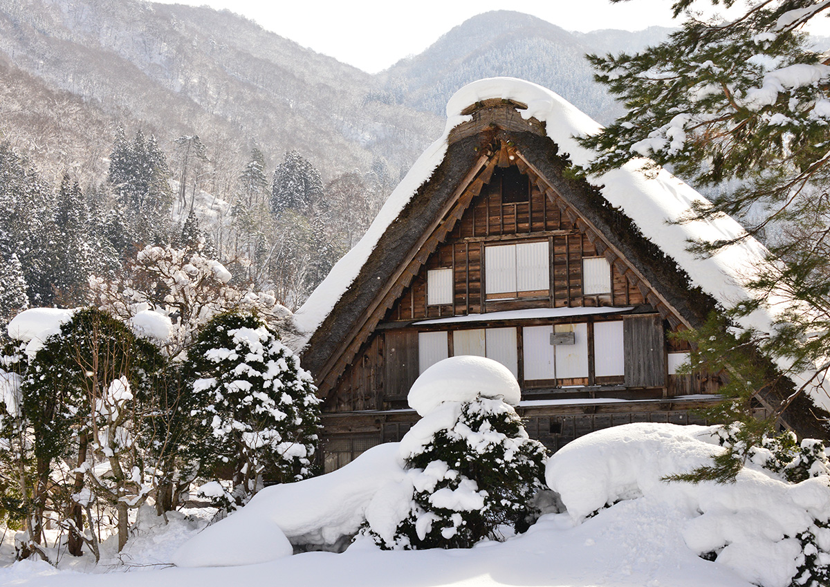 Shirakawago in winter