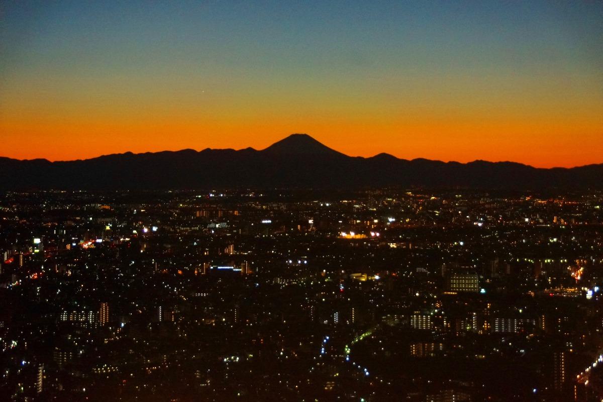 東京都廳舍