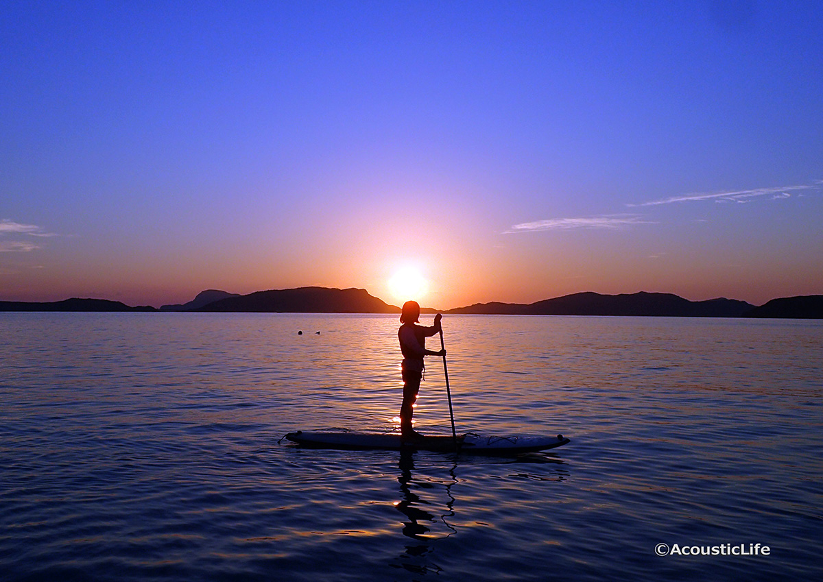 Sunset Stand Up Paddle Board