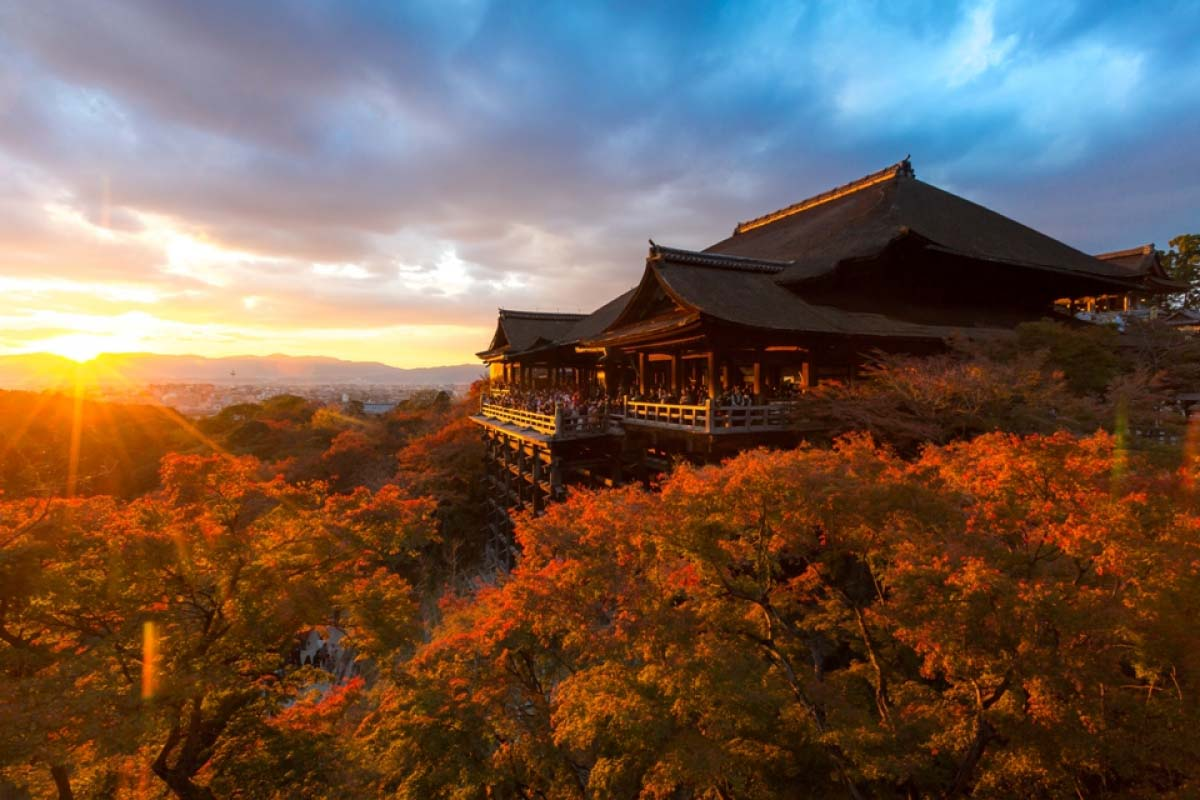 Image result for kyoto faLL