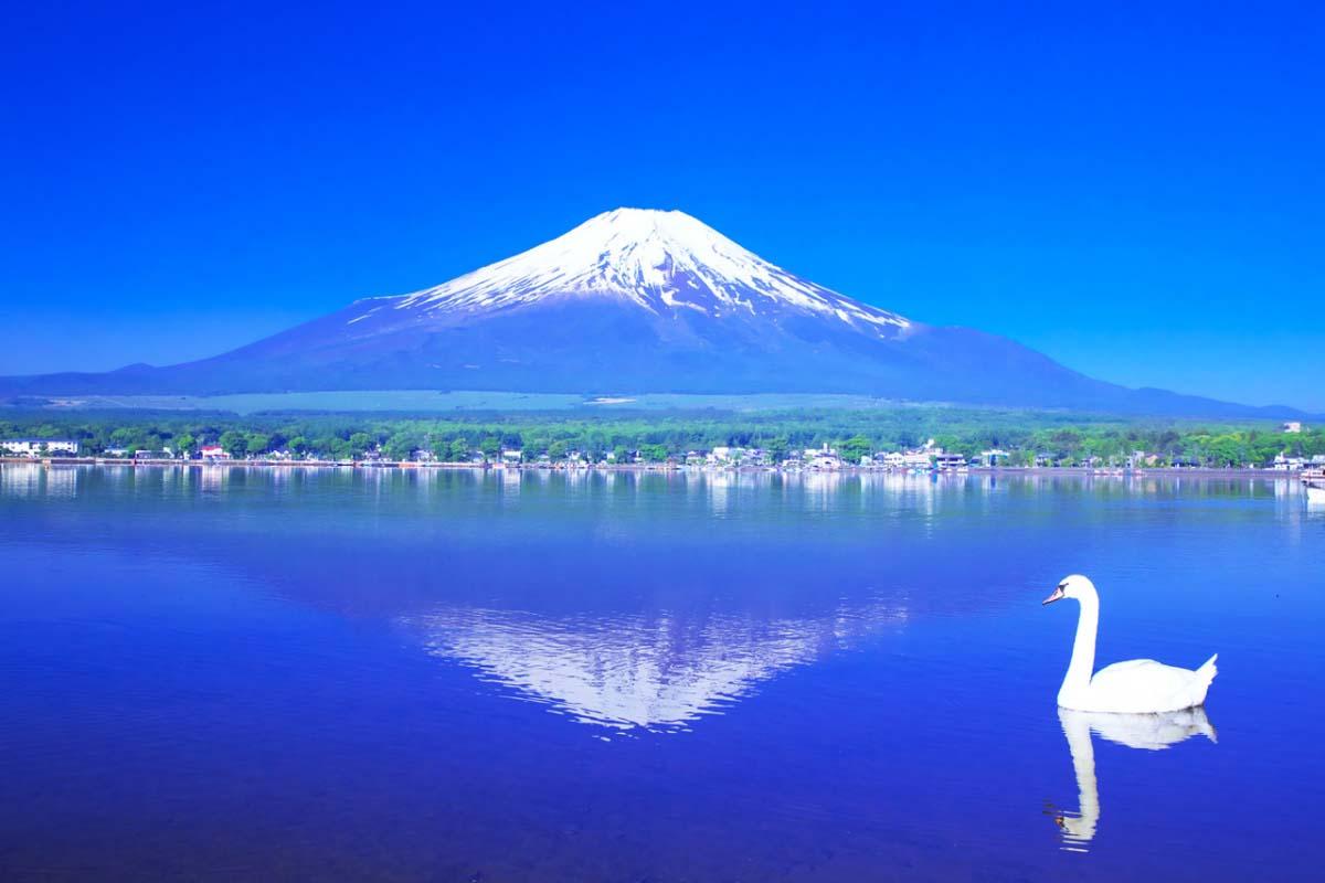 富士山の絶景スポット|ZEKKEI Japan(1/2)