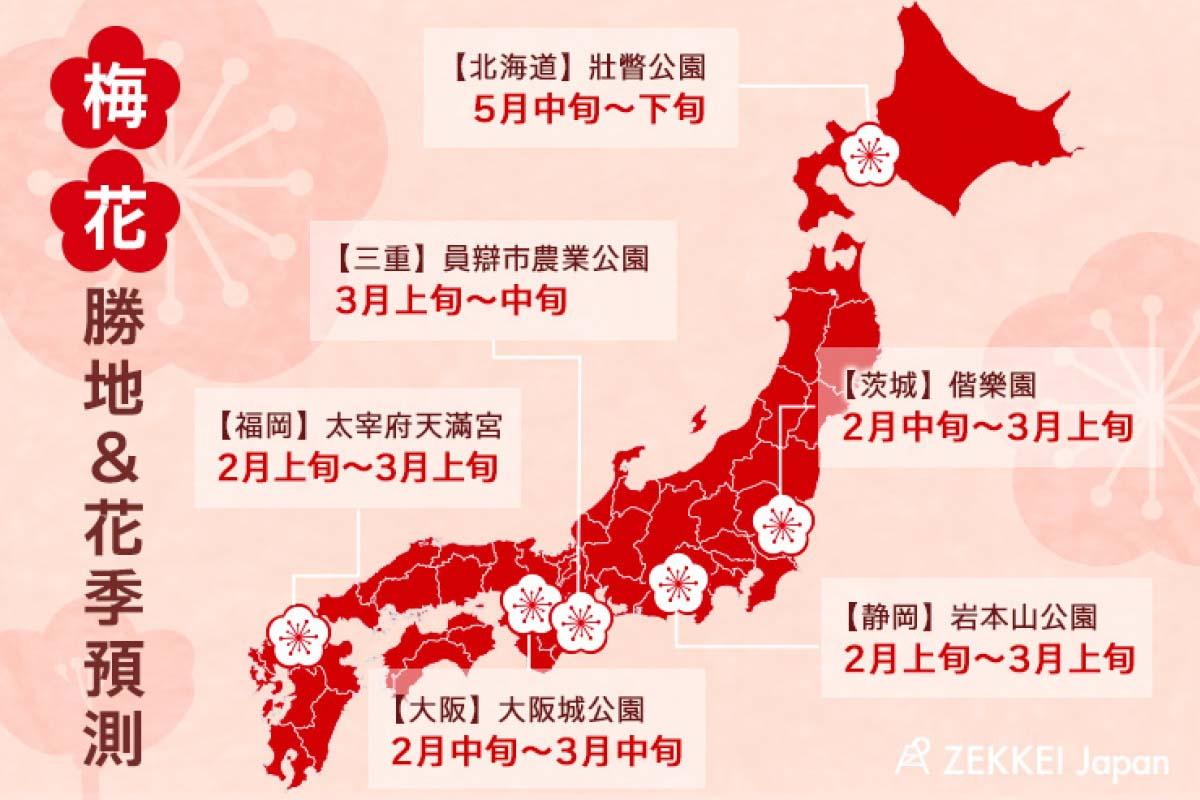 繽紛春天來臨!精選日本6大梅花勝地&花季預測