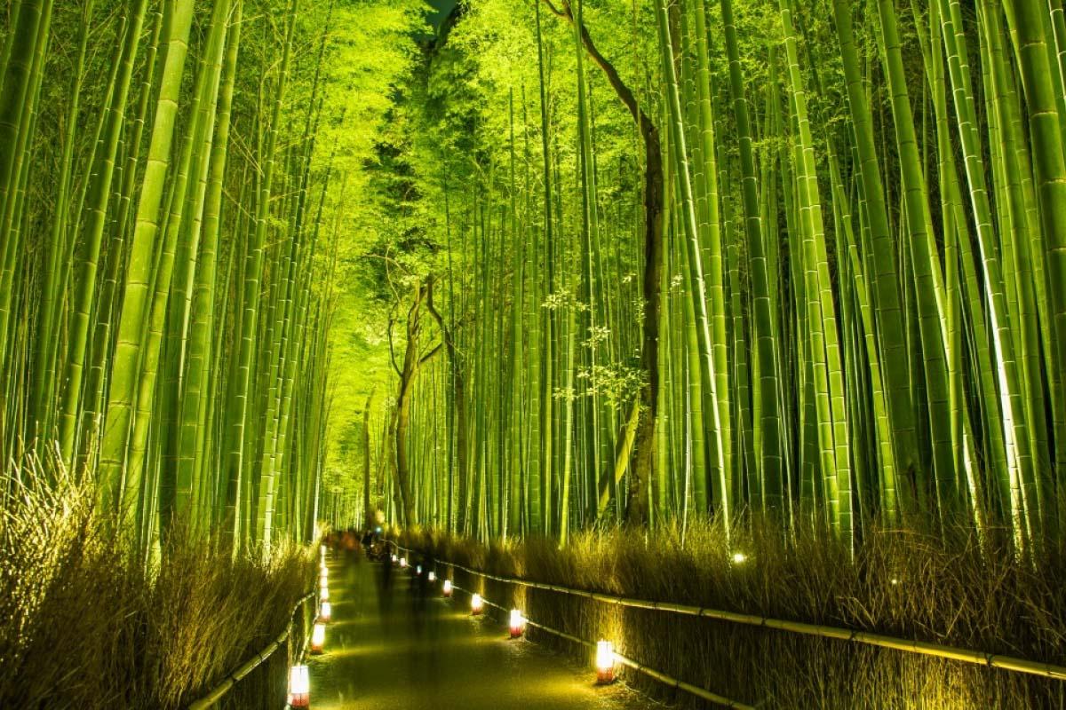 Top 5 địa điểm đẹp nhất của tháng 12, nổi tiếng trên toàn thế giới