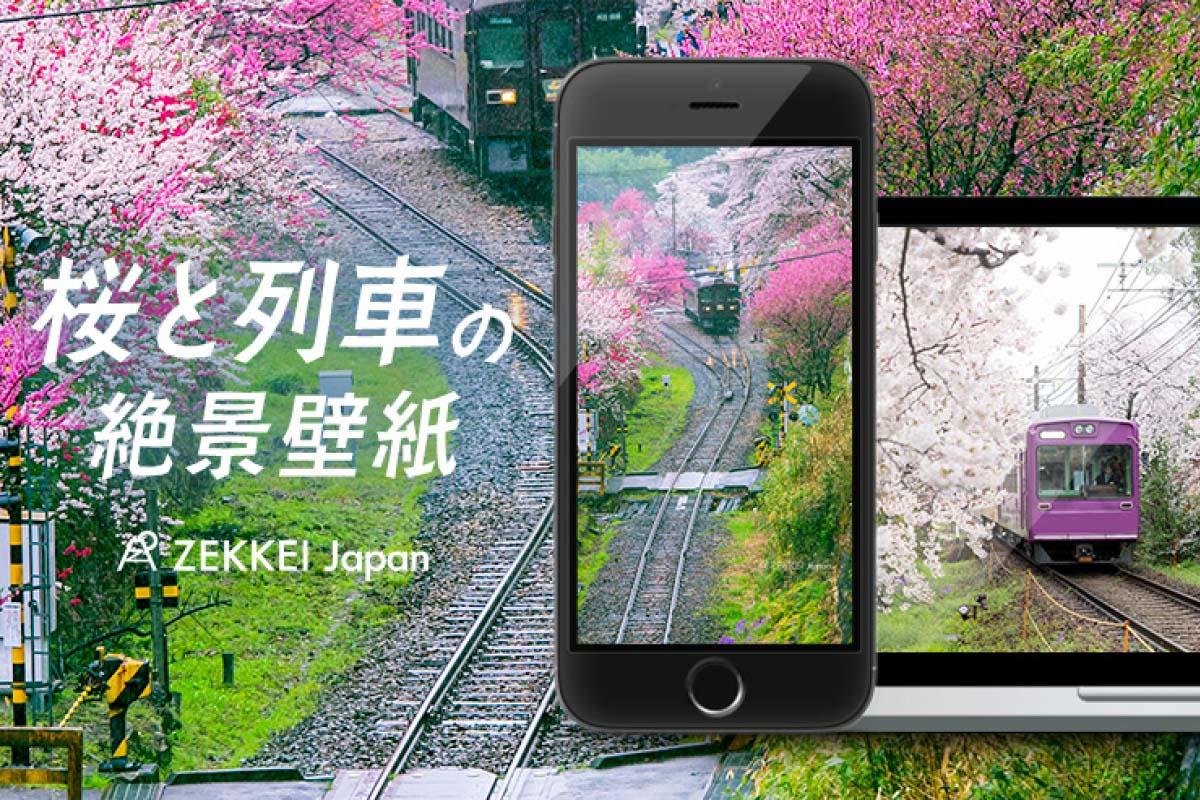 <絶景壁紙>のどかな桜と列車の壁紙をあなたの待ち受けに