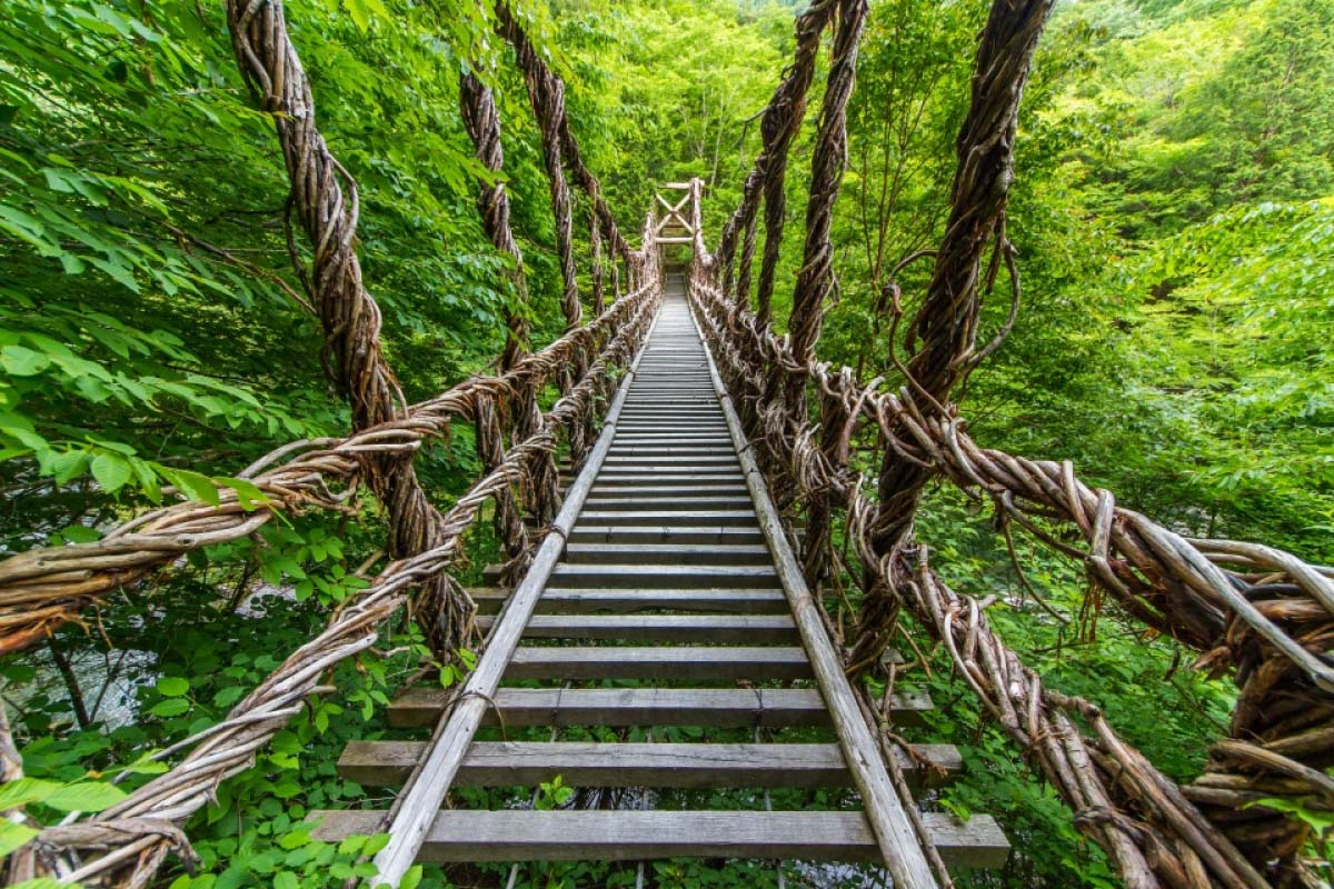 奥祖谷 かずら橋