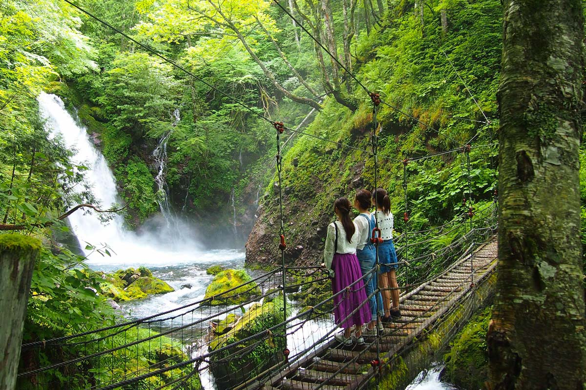 五色ヶ原の森 横手滝