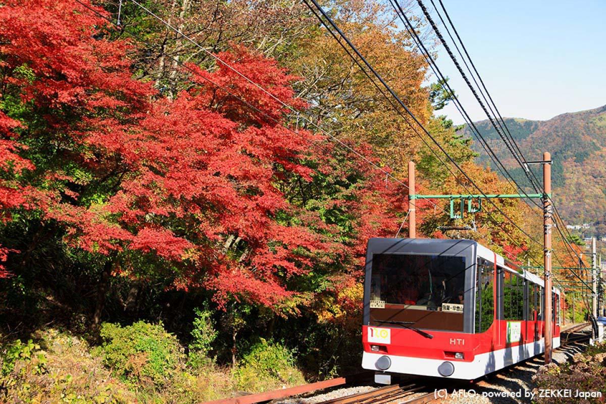 懐かしのSLから『あまちゃん』列車まで!景色を楽しむ「絶景鉄道」ベスト5!