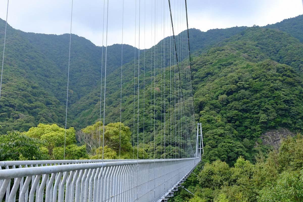 綾之照葉大吊橋