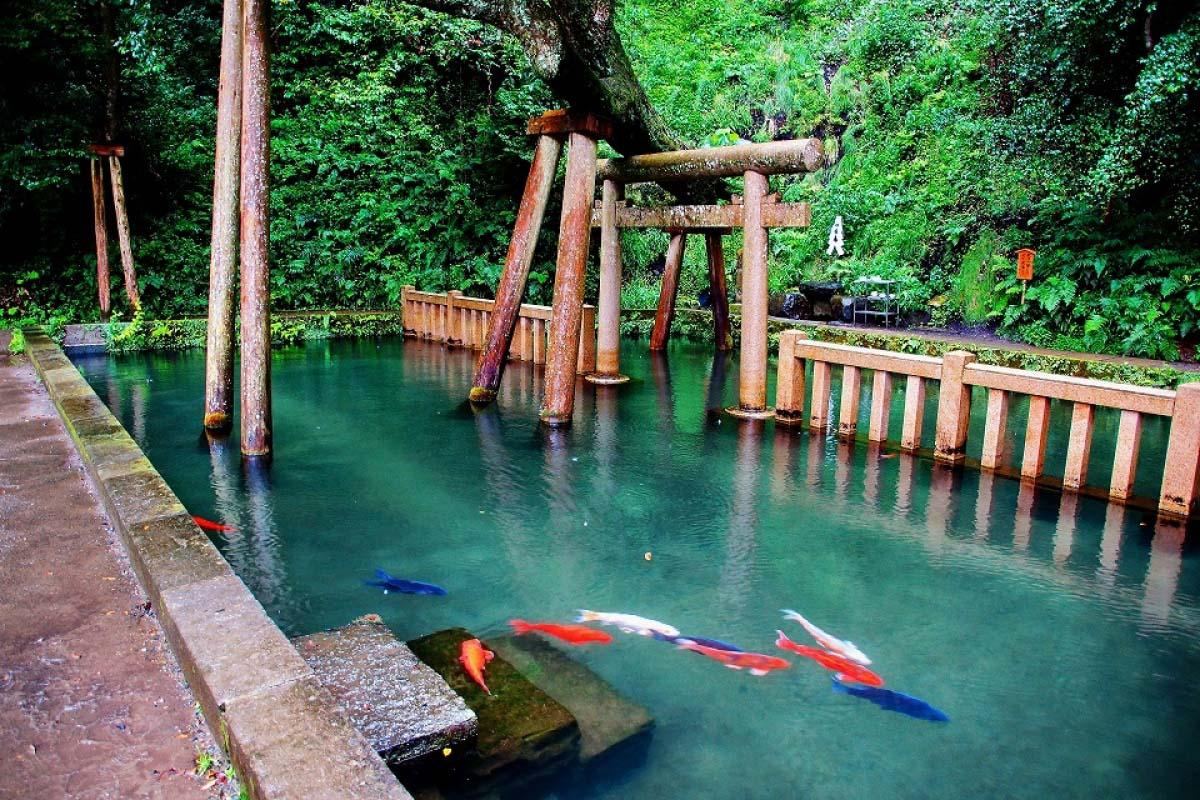 7 beautiful spots in Ibaraki other than the Hitachi Seaside Park