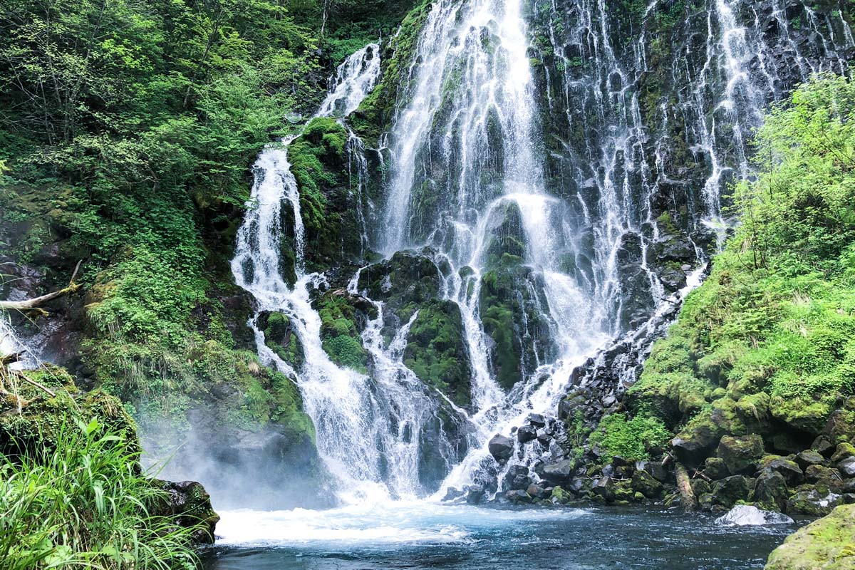 五色ヶ原の森 布引滝