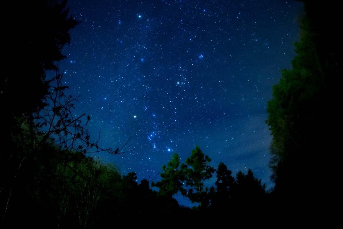 日本一の星空ツアー・天空の楽園