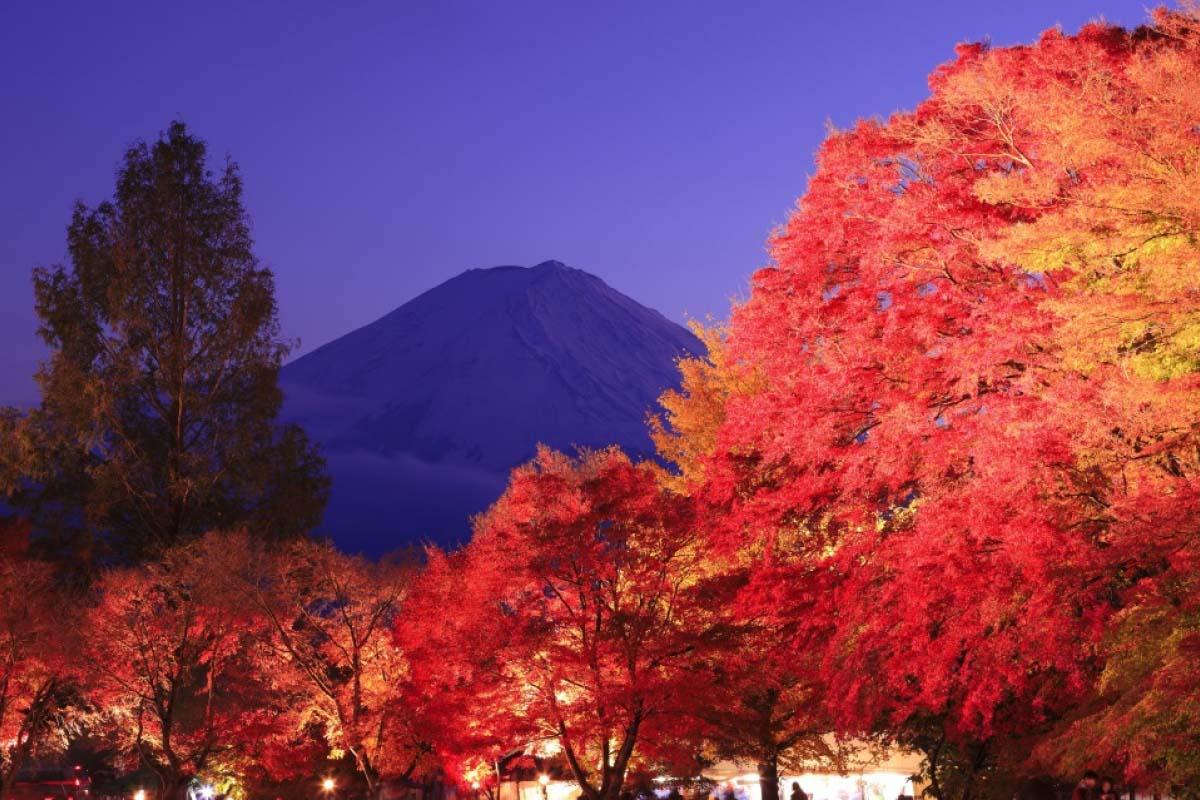 富士河口湖紅葉祭