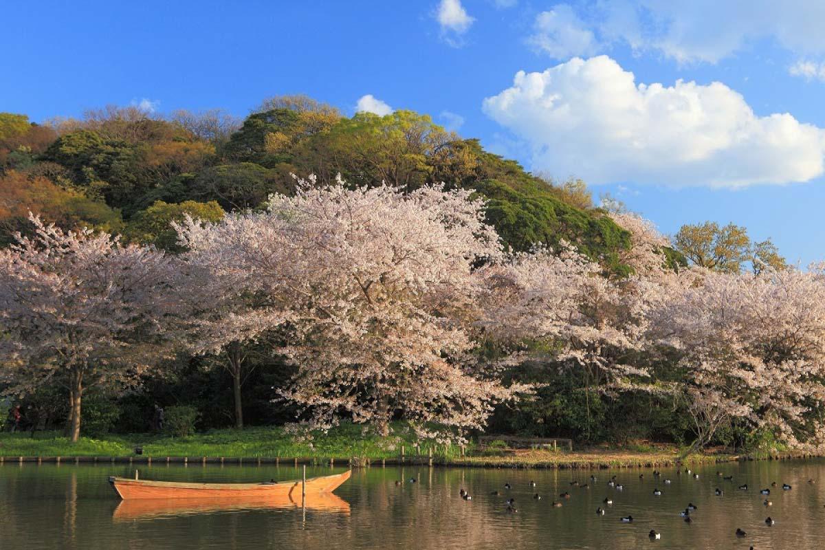 三溪園|神奈川県