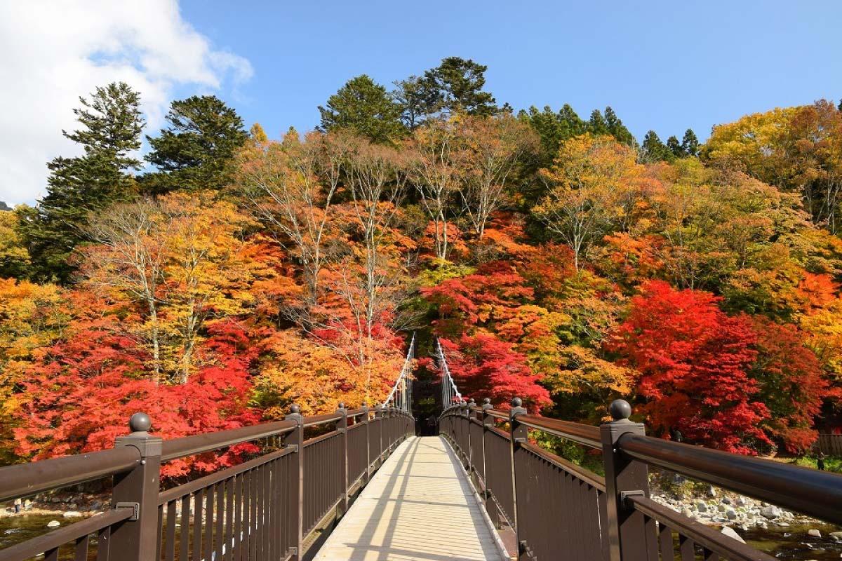 栃木県・那須の3大紅葉スポット!滝・ロープウェイ・吊り橋が秋色に。