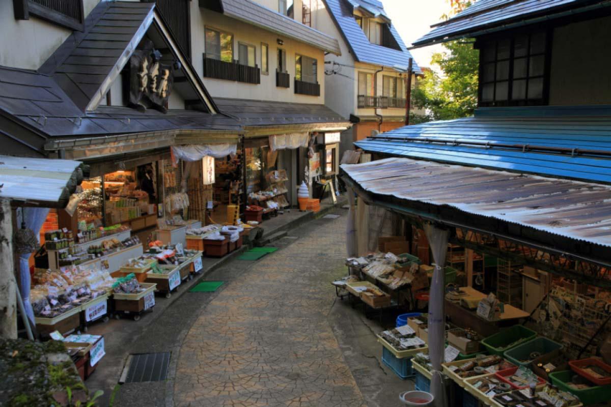 Nozawa Onsen Pilgrimage