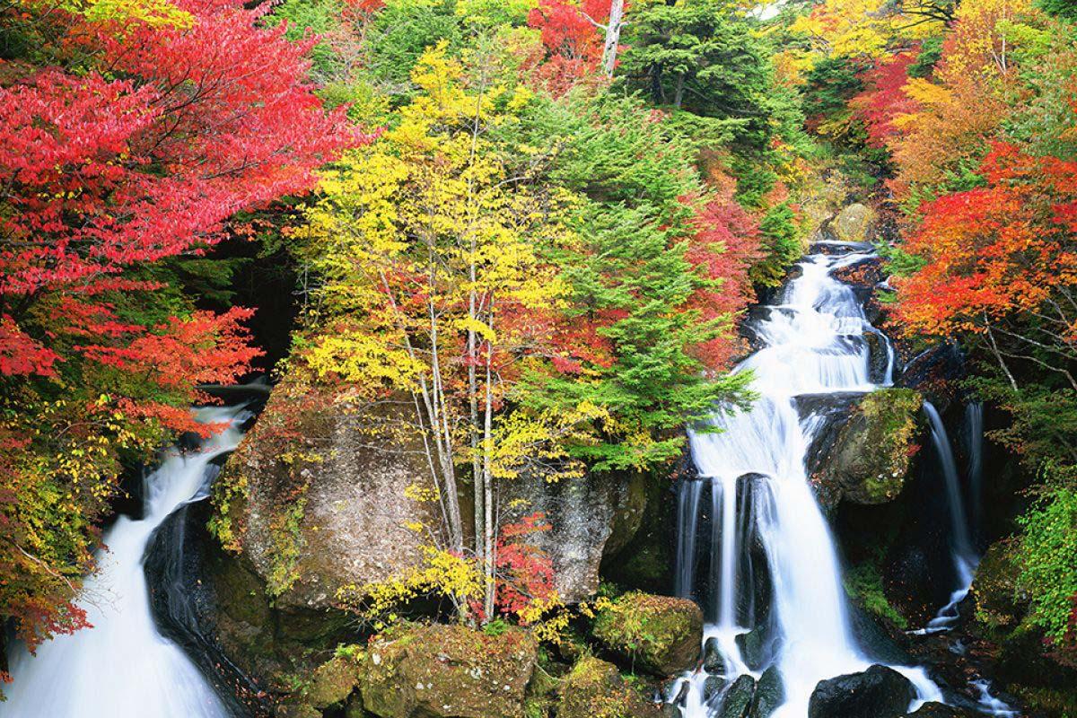 """360度,看枫林遍野!10月必去的""""日本枫叶美景""""大排名!"""