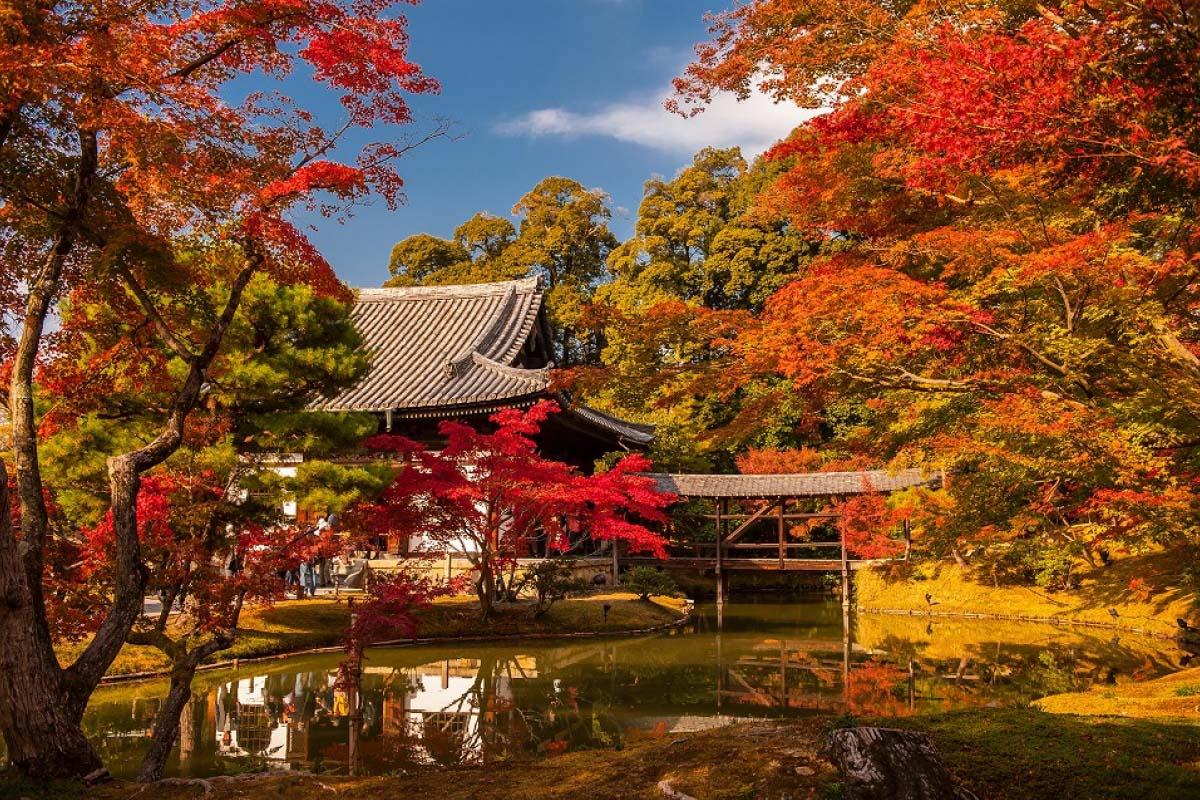 Review Du Lịch Nhật Bản Tự Túc Siêu Chi Tiết Và Tiết Kiệm 8