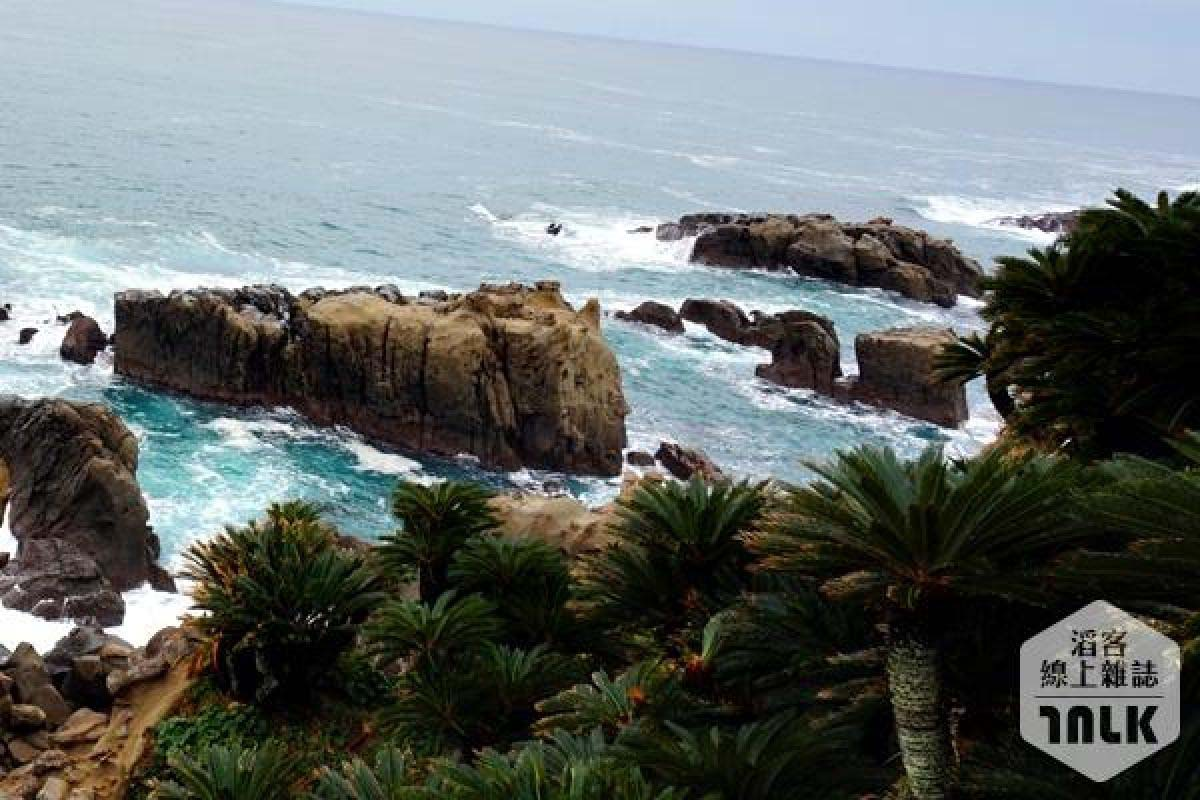 日南海岸線