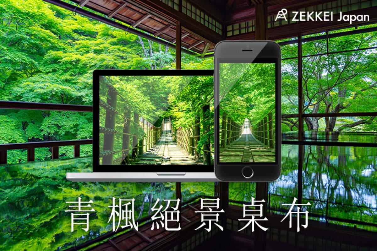 <絕景桌布> 新綠季節清新涼爽! 「青楓」絕景桌布