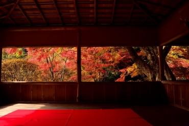 1日100人限定!? 京都の紅葉の穴場「白龍園」でレア絶景を堪能しよう!