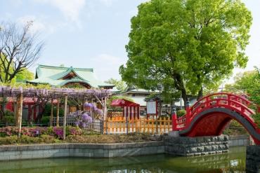 有拜有保佑! 訪尋東京神社,祈求各種好運攻略