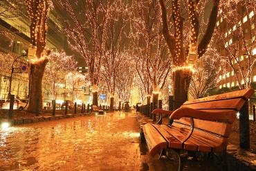 【冬季限定】台灣手繪燈籠也展出! 日本7大光彩奪目絕美燈光秀