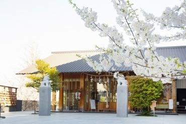 文青必訪! 東京4大充滿時尚與文化氣息並重之地