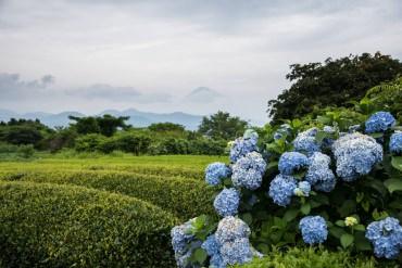 日本の絶景写真コンテスト~12月の作品ピックアップ~Ver.2~