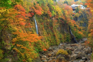Let's go hiking on the mountains covered in autumn leaves to fully enjoy the autumn season in Japan!