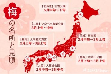 鮮やかな春の訪れ!日本全国 梅の名所6選と見頃予想