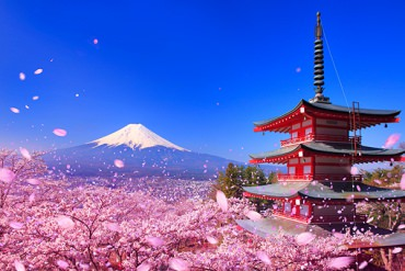"The Heights of Japanese Scenery: Springtime's Miraculous ""Triple Shots"""