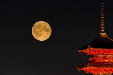 中秋連假怎麼玩?日本中秋節賞月景點推薦