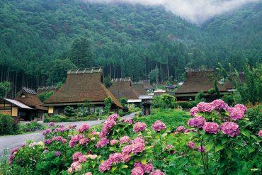 【雨季限定的綺麗花景】日本人心目中十個紫陽花必訪景點!
