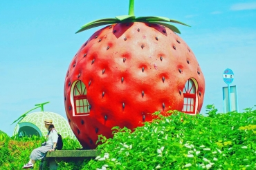 The very charming fruit-shaped bus stops of Nagasaki Prefecture