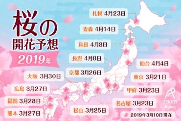 【速報】2019年日本櫻花前線! ZEKKEI編輯部精選24處賞櫻景點