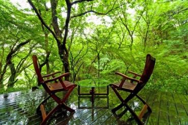盡情享受森林浴! 身心療癒日本旅館十選