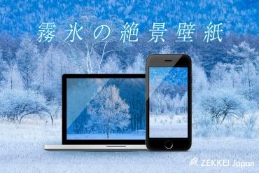 【絶景壁紙】銀世界で輝く氷の花「霧氷」の絶景壁紙