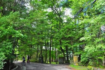 東京近郊人氣輕旅行!輕井澤單車一日遊必訪4大景點