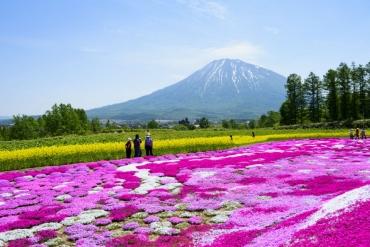 日本最受歡迎的觀光都市,猜猜第一名是哪裡?