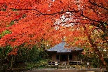 日本東北絕景之秋! 「岩手」紅葉絕景10選