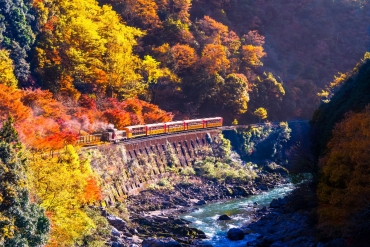 Autumn in Japan is so beautiful! ZEKKEI's Captivating Fall Foliage Recommendations – Train and Ropeway Edition