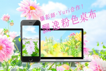 【ZEKKEI X 日本攝影師YURI合作】少女心滿滿~ 夢幻粉色系春天花朵絕景桌布!