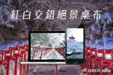 【絕景桌布】日本冬季白雪紛飛中紅白交錯爭艷絕景桌布!