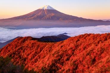 日本錦秋限定!震撼人心7大雲上紅葉絶景