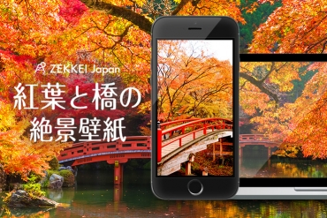 <絶景壁紙>色とりどりの紅葉に包まれる「橋」の壁紙を、あなたのパソコンやスマホに