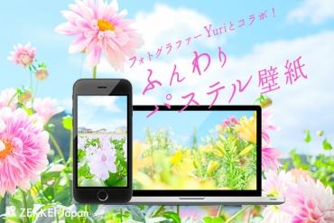 【コラボ絶景壁紙】ふんわりパステルカラーのお花の絶景壁紙