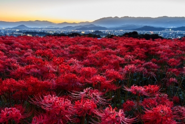 秋天来临!9月想去的日本绝景排名!