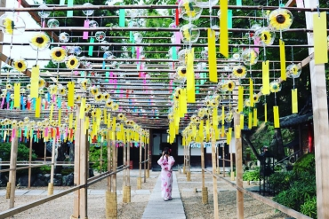 【Phiên bản năm 2019】Những chiếc chuông gió dễ thương làm quà kỷ niệm!  Bảy lễ hội chuông gió thu hút giới nhiếp ảnh gia